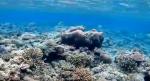 番外編-山原海岸(クリスタルビーチ) -20170424
