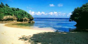 今日のヤドカリビーチ