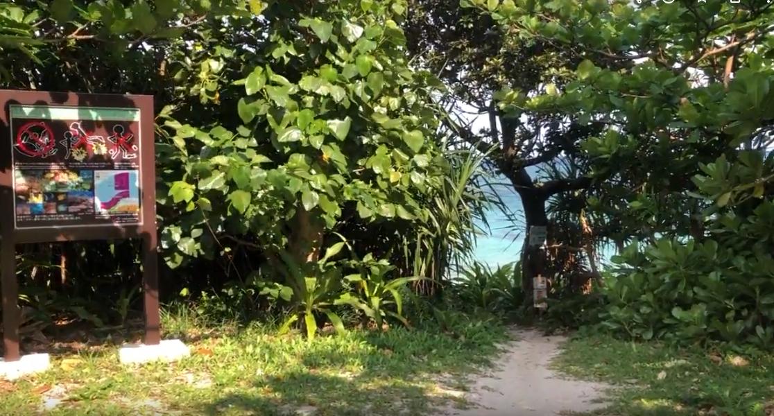 米原キャンプ場からビーチ入口(2019/04/10)